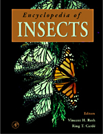 Encyclopedia of Insects - 9780080546056