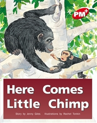 Here Comes Little Chimp - 9780170095631