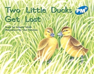 Two Little Ducks Get Lost - 9780170096584