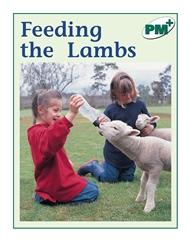 Feeding the Lambs - 9780170096850