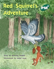 Red Squirrel's Adventure - 9780170097239