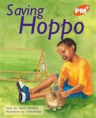 Saving Hoppo - 9780170097338