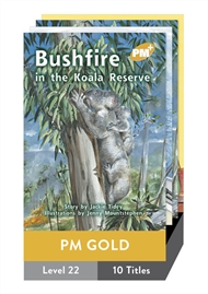 PM Plus Story Books Gold Level 22 Pack (10 titles) - 9780170098502
