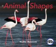 Animal Shapes - 9780170103305
