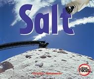 Salt - 9780170104517