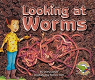 Looking at Worms - 9780170112499