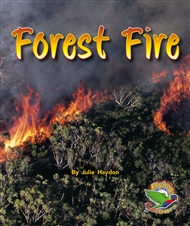 Forest Fire - 9780170113229