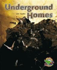 Underground Homes - 9780170120326