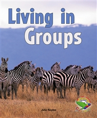 Living in Groups - 9780170120814