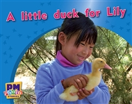 A little duck for Lily - 9780170123198