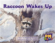 Raccoon Wakes up - 9780170124300