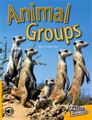 Animal Groups - 9780170124973