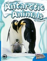 Antarctic Animals - 9780170125321