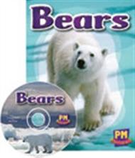Bears - 9780170127905