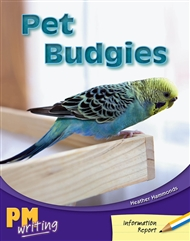 Pet Budgies - 9780170132237