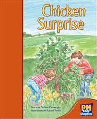 Chicken Surprise - 9780170136198