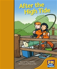 After the High Tide - 9780170136501