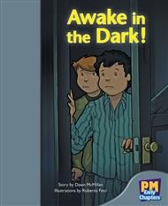 Awake in the Dark! - 9780170136525