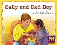 Sally and Red Boy - 9780170193887