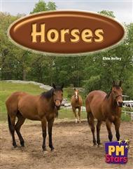 Horses - 9780170194075