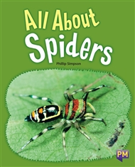 All About Spiders - 9780170358743