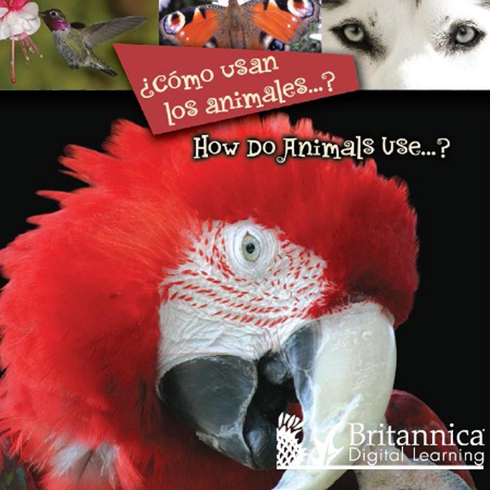 ¿Cómo usan los animales…? (How Do Animals Use…?) - 9781615357581