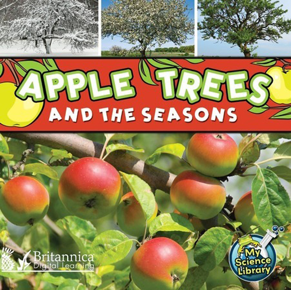 Apple Trees and the Seasons - 9781615357680