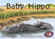 Baby Hippo - 9781869558154