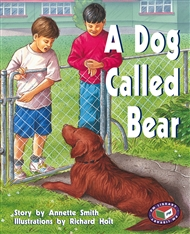 A Dog Called Bear - 9781869612511