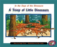 A Troop of Little Dinosaurs - 9781869612597