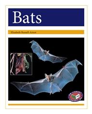 Bats - 9781869613143