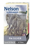 PM Story Books Silver Set A Level 23 Pack x 6