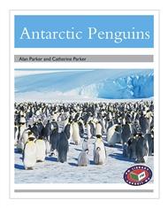 Antarctic Penguins - 9781869613808