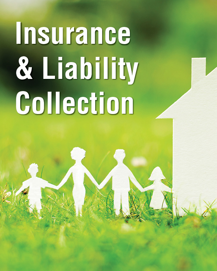 Insurance & Liability Collection - 233382