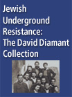 Jewish Underground Resistance: The David Diamant Collection - 264859