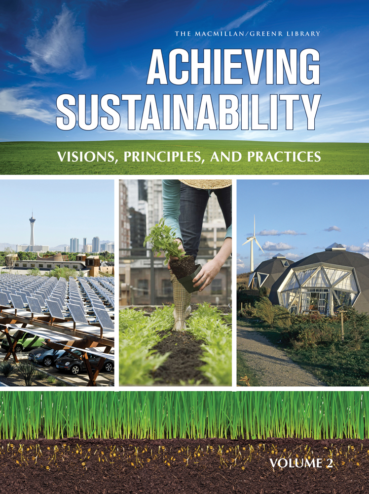 Achieving Sustainability: Visions, Principles, and Practices - 9780028662046