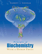 Principles of Biochemistry With a Human Focus - 9780030973697
