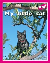 My little cat - 9780170095372