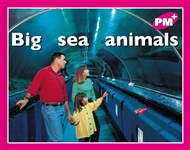 Big sea animals - 9780170095402