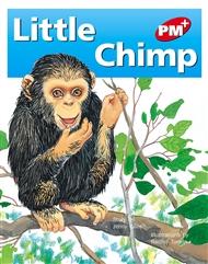 Little Chimp - 9780170095662