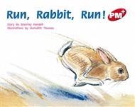 Run, Rabbit, Run! - 9780170095891