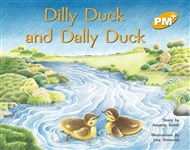 Dilly Duck and Dally Duck - 9780170096164