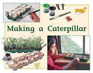 Making a Caterpillar - 9780170096393