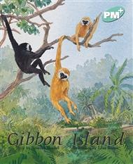 Gibbon Island - 9780170097765