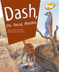 Dash, the Young Meerkat - 9780170098465