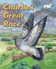 Charlie's Great Race - 9780170098861