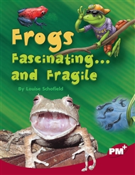 Frogs: Fascinating... and Fragile - 9780170099349