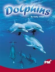 Dolphins - 9780170099363