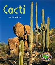 Cacti - 9780170113151