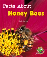 Facts About Honey Bees - 9780170116060